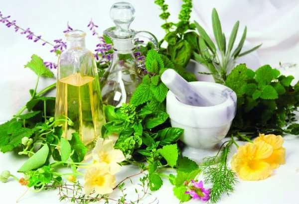 Как лечить токсоплазмоз у человека народными средствами